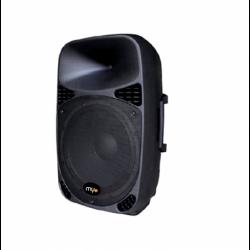 Passive Black Loudspeaker